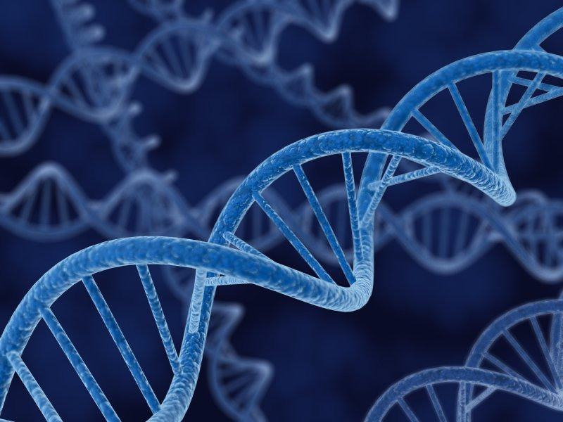 3d render of a DNA spirals