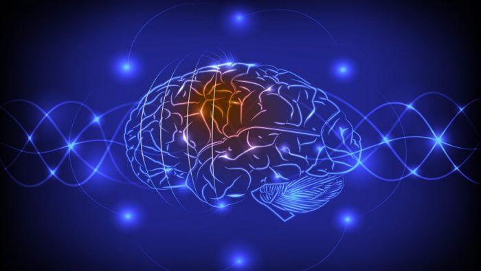 Su Cerebro: la próxima interfaz