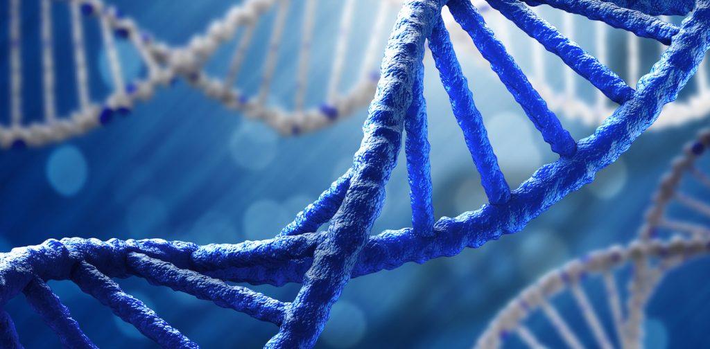 Rastreo de personas por ADN