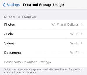 Autodescarga y almacenamiento de fotos, audios, videos y documentos en WhatsApp.