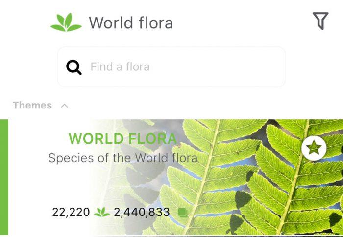 PlantNet: ¿Tiene varias plantas desconocidas en su huerta? Identifíquelas!
