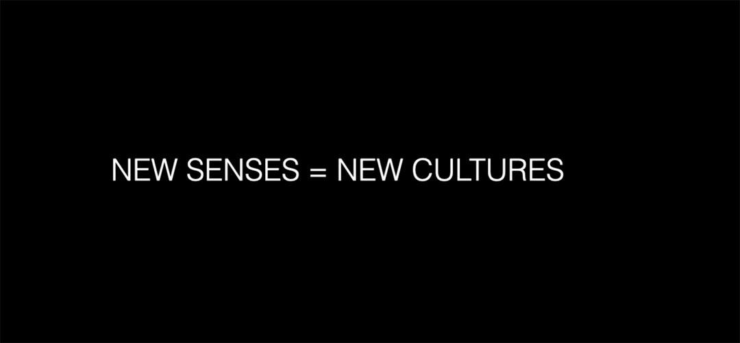Nuevos sentidos = nuevas culturas