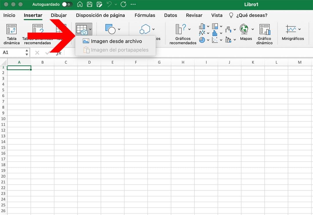 Insertar datos desde una imagen en Excel